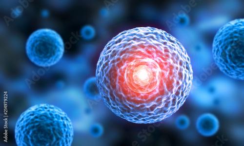 Leinwanddruck Bild Stammzellen - 3D Visualisierung