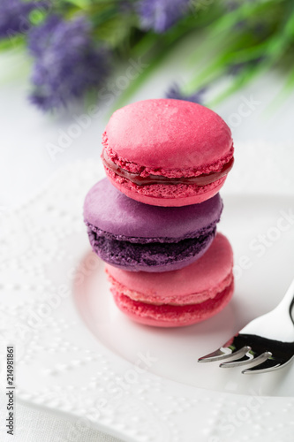 Plexiglas Macarons Colourful and sweet Macaroon
