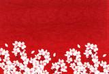 桜 春 年賀状 背景 - 215029089