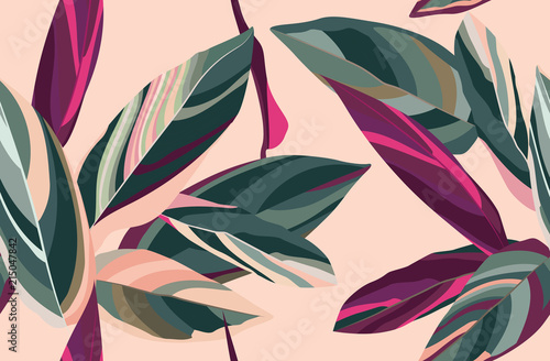 Leaves of Cordelia on a pink background. Floral seamless pattern. - 215047842