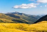 yellow meadow in Carpathian valley - 215059262