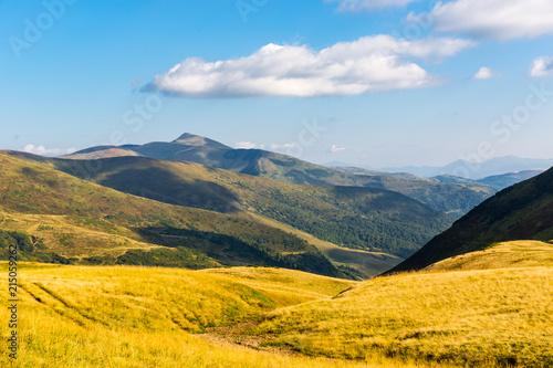 Aluminium Meloen yellow meadow in Carpathian valley