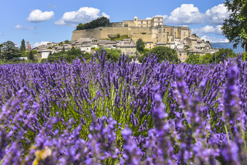 village Grignan situated on a hill with lavender, Provence, France, village with castle Château de Grignan, in Drôme department, region Auvergne-Rhône-Alpes