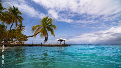 Plexiglas Tropical strand beach in the caribbean with turquoise water and palm trees