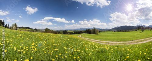 Panorama krajobraz z drogą gruntową przez wiosny łąki i sunbeams