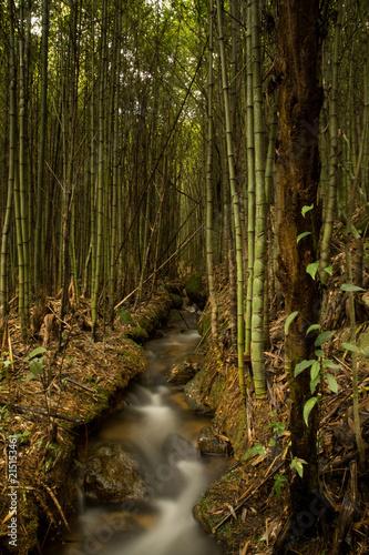 Aluminium Bamboe Paz