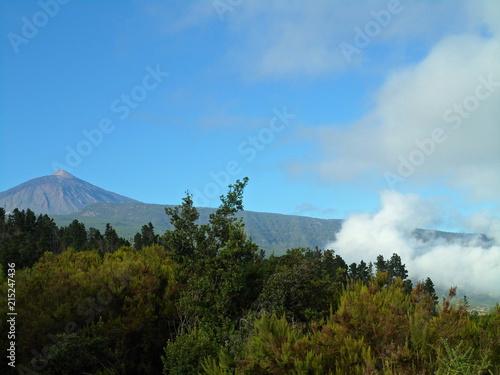 Canvas Blauw Blick auf den Teide und seine Umgebung