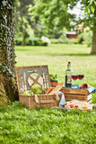 Romantic picnic for two outdoors in a spring park