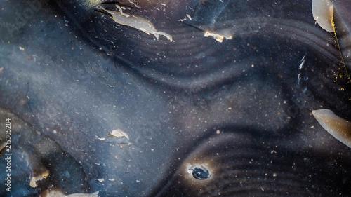 Fotobehang Heelal Starry background, shot from chalk stone