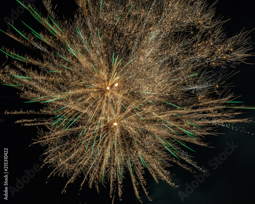 Canvas Paardenbloemen Fourth of July, 2018 fireworks.