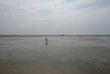 Kleiner Junge läuft im Watt