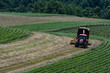 Farmer harvesting hay into silage wagon