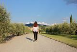 Ragazza cammina tra gli olivi, Firenze, Toscana, Italia
