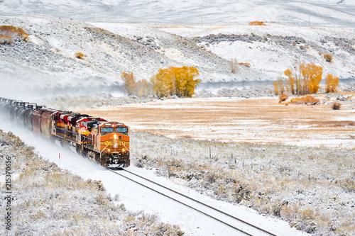 Train transporting tank cars. Season changing autumn to winter.