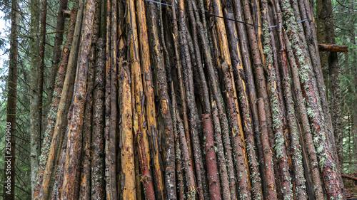 Canvas Bamboe Ferienfoto