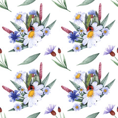 A collection of herbs and flowers. Chamomile, plantain, cornflowers. Watercolor.