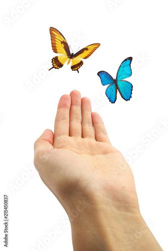 Hands releasing butterflies.