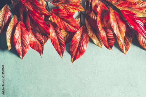 Bright orange red autumn leaves border on turquoise background, top view with copy space. Fall layout. Retro styled