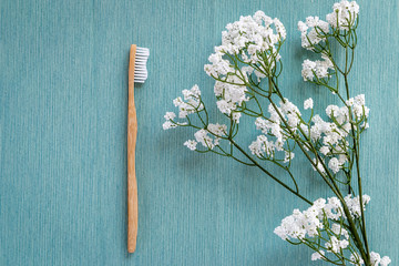 Biodegradable bamboo toothbrush on a blue canvas © Accessony