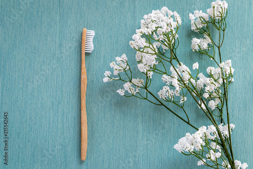 Biodegradable bamboo toothbrush on a blue canvas