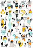 Cute vector zoo alphabet poster with latin letters and cartoon animals. Set of kids abc elements in scandinavian style - 215552226
