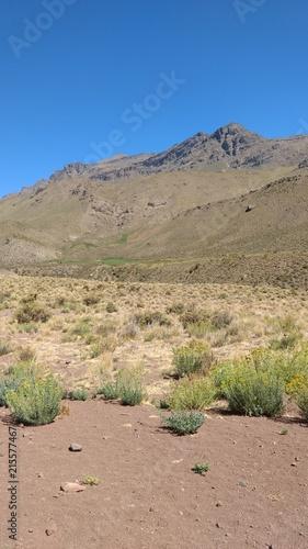 Foto Spatwand Zalm Paso a Chile Argentina/Chile