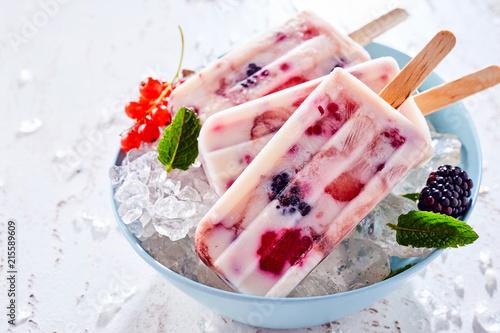 Leinwanddruck Bild Blackberry and red currant frozen yogurt dessert