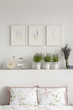Close-up of pillows with flowers, bike and plants on a shelf and graphics on the wall in a bedroom interior. Real photo