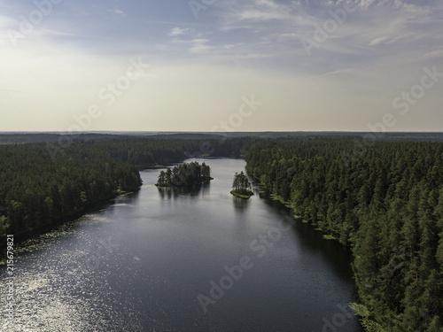 Fotobehang Grijze traf. Aerial view near forest lake, Estonia, Viitna