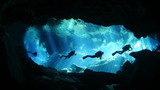 Diving in cenote - 215687650