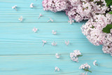 pink lilac flower on blue wooden background. top view with copy space - 215690487