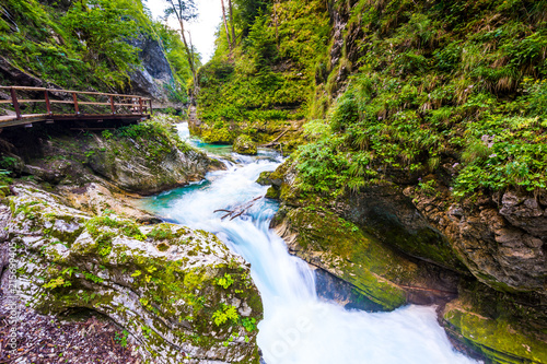 Vintgar gorge, Slovenia. River near the Bled lake with wooden tourist paths, bridges above river and waterfalls. Hiking in the Triglav national park. Fresh nature, blue water in the forest. Wild trees - 215699405