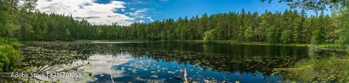 Panorama einer wunderschönen Seenlandschaft im schwedischen Smaland - 215701059