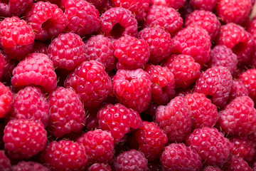 Ripe raspberry background