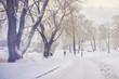 Quadro Powdered Helsinki