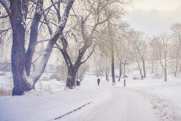 Powdered Helsinki © RubberHorse