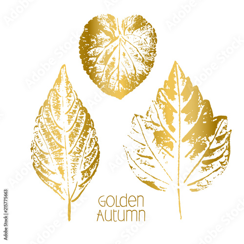 Golden Autumn. Leaf fall. Prints of different leaves. Gold on white.