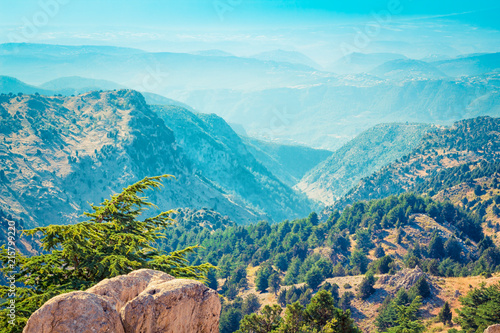 Foto Spatwand Turkoois Lebanon mountains with cedar trees forest, Lebanon
