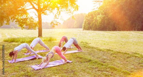 Fototapeta samoprzylepna Gruppe macht Yoga im Sommer im Park