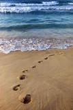 Dover Beach. Barbados - 215804809