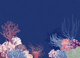 Vector background with colorful coral reef - 215843086