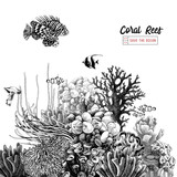 Hand drawn coral reef with tropical fishes - 215843212