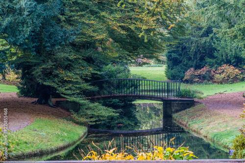 Foto Spatwand Olijf Path in park