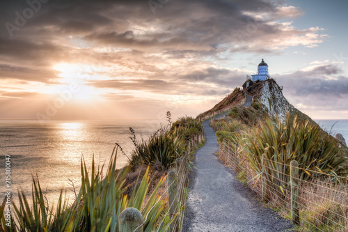 Nugget Point, New Zealand - 215880047