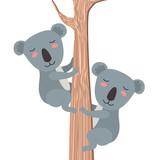 wild koalas couple in tree vector illustration design