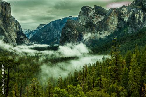Aluminium Olijf Yosemite National Park