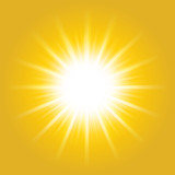 Shiny hot sun lights, summer concept yellow bright and vibrant color background. - 215901013