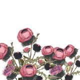 Botanical floral illustration for design. Ideal for fabric - 215910452