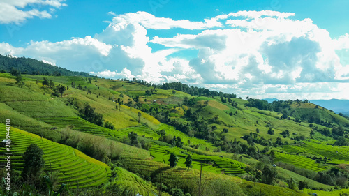 Foto Spatwand Zomer Panoramic View Of Agricultural Field Against Sky in Chiang Mai Thailand.