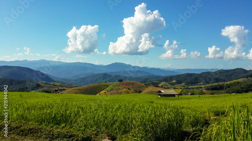 Foto Spatwand Lente Panoramic View Of Agricultural Field Against Sky in Chiang Mai Thailand.